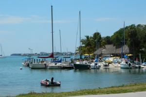 Sarasota Marina